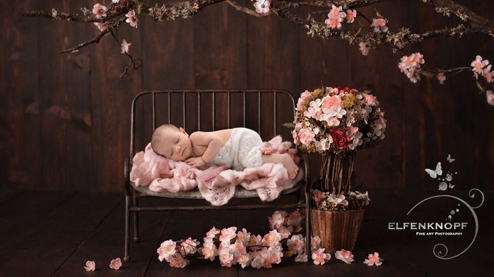 Babyfotografie Newbornfotografie Slider (18)