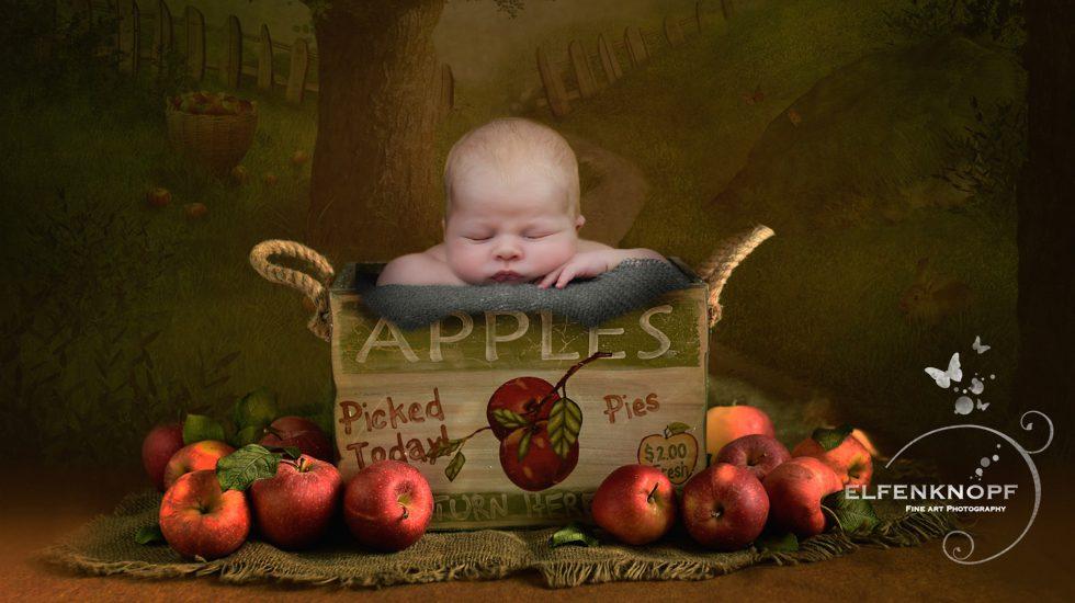 Babyfotografie Newbornfotografie Slider (26)
