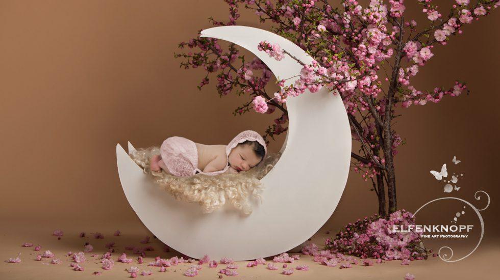 Babyfotografie Newbornfotografie Slider (27)