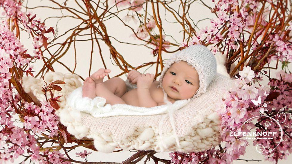 Babyfotografie Newbornfotografie Slider (7)