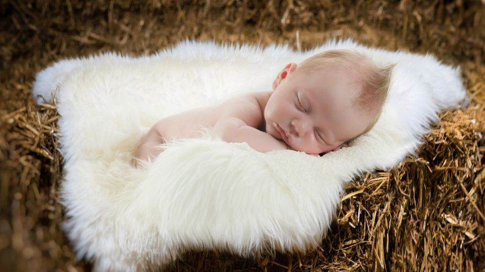 Newborn Fotografie Slider12
