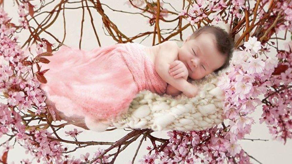 Newborn Fotografie Slider2
