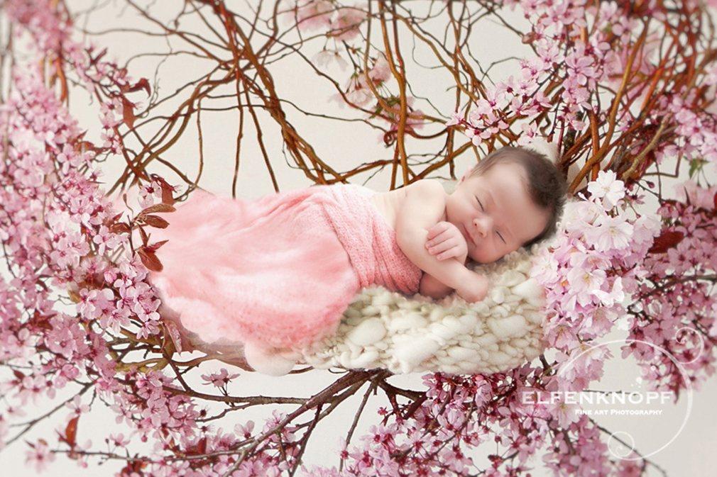 Babyfotografie Newbornfotografie Elfentraum (48)